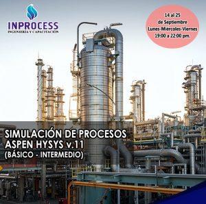 Simulación de Procesos con Aspen HYSYS v.11 (Básico – Intermedio)